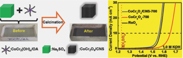 Strongly Coupled CoCr2O4/Carbon Nanosheets as High Performance Electrocatalysts for Oxygen Evolution Reaction