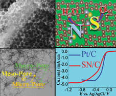A self-sponsored doping approach for controllable synthesis of S and N co-doped trimodal-porous structured graphitic carbon electrocatalysts
