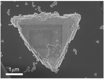 Superstructures and SERS Properties of Gold Nanocrystals with Different Shapes