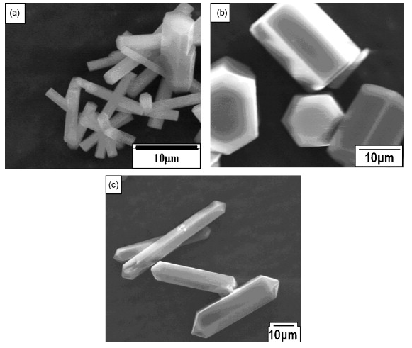 Morphology control of hydroxyapatite through hydrothermal process