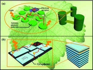 Granum‐Like Stacking Structures with TiO2–Graphene Nanosheets for Improving Photo‐electric Conversion