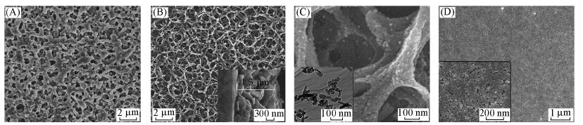 Preparation and potocatalytic property of porous TiO2 film with net-like framework